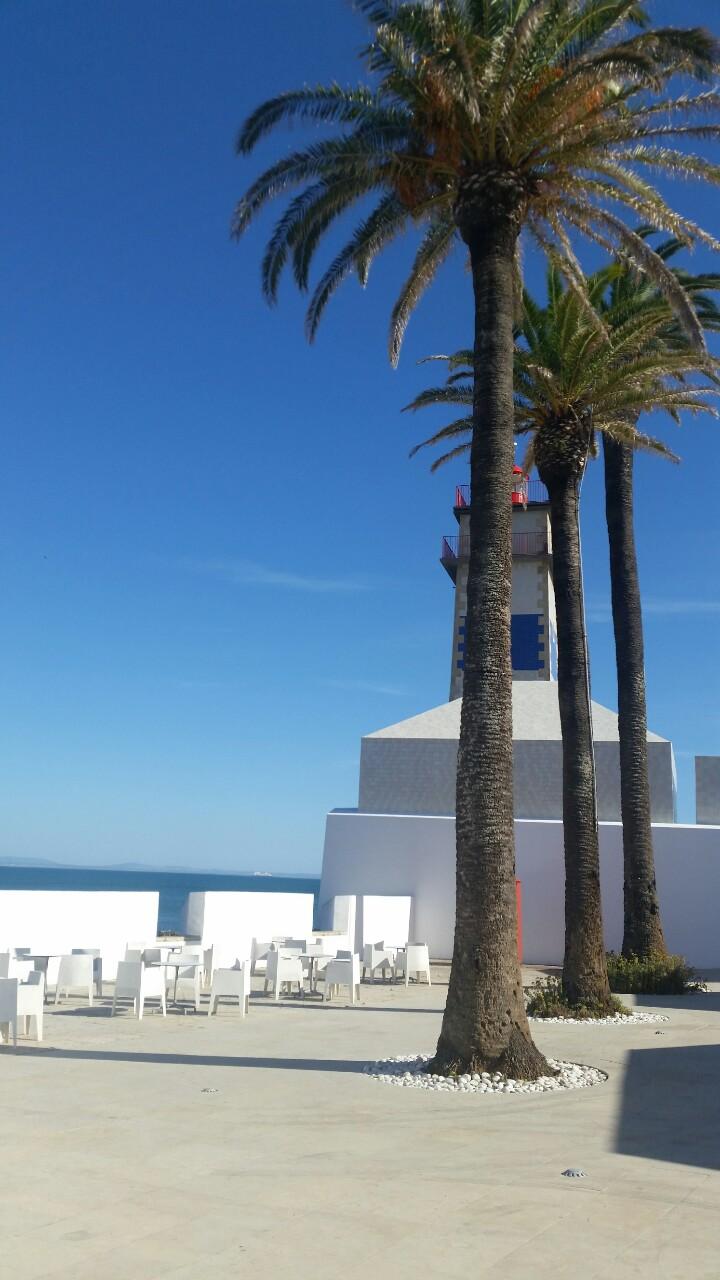 Leuchtturm hinter Palmen